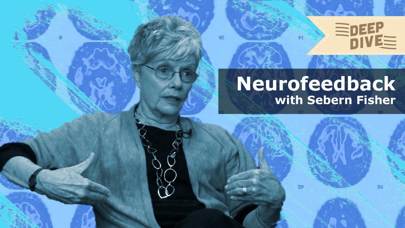 Neurofeedback Series #2 (Lecture by Sebern Fisher)
