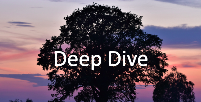 Deep Dives Series